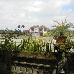 Vista - View