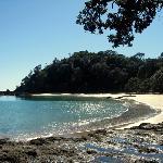 Whale Bay, Tutukaka Coast