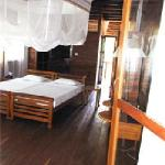Be one with nature in our spacious ocean view wooden lofts