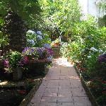 Town center - garden