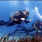 Me and another diver on our discover dive