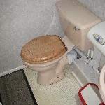 Toilet with doormat