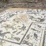 mosaico di nettuno