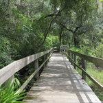Flatwoods Wilderness Park