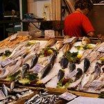 Hidden Markets of Thessaloniki tour - Fish market