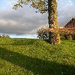 The hammock :)