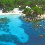 Spiaggia di Palombaggia (35255781)