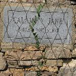 Calamity Jane Grave Marker