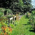Giardino alla London Heritage Farm