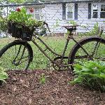 Repurposed bike in front yard