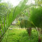 Foto di Citrus Sriperumbudur