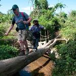 A log bridge on trek