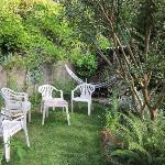 A corner of the garden.
