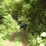 Jungle path!