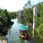 el recorrido por el manglar
