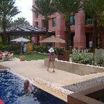 cove pool
