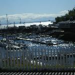 The marina in Tadoussac