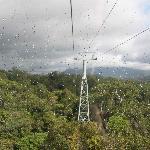 stunning views over the rainforest