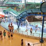 A tropical oasis at Waterworld