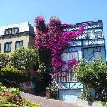 Le ville che circondano Lombard Street