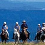 Horse ride the High Country