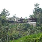 View of Villa's from rice terrace below. Ask for a guide.