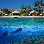 Wakatobi's spectacular house reef is just a few steps from your room.
