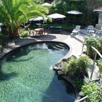 swimming pool set in subtropical garden