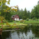 Rental barn cabin from across the pond