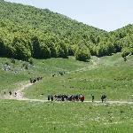 Passeggiate trekking