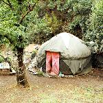Vista Geral da Apple Tree Yurt