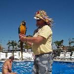 Dakota the hotel bird