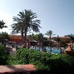 impressive gardens and palm trees