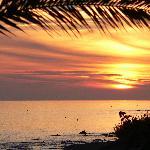 Sunset / Artardecer / Coucher de soleil 1