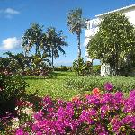The Gardens at Royal West Indies