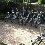 Beach cursing bikes to use.