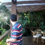 restaurant´s terrace