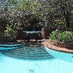 Kirawira Pool