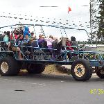 The dune buggy