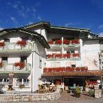 Foto de Alpino Family Hotel