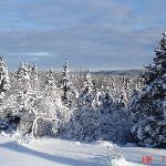adventurous XC skiing