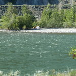 View of Fraser River from the RV park - brave tenters