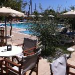 the pool area from the bar