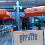 Giraffe, Lakeside