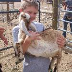 Holding the Goats - Priceless!