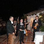 Mariachi band during dinner!