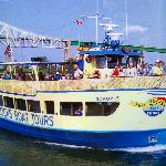 Typical Tour Boat