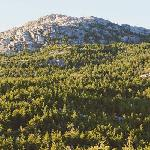Mount Monadnock - nearby