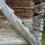 Treppe, aus einem einzigen Baumstamm geschnitten
