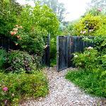"""A """"secret garden"""""""